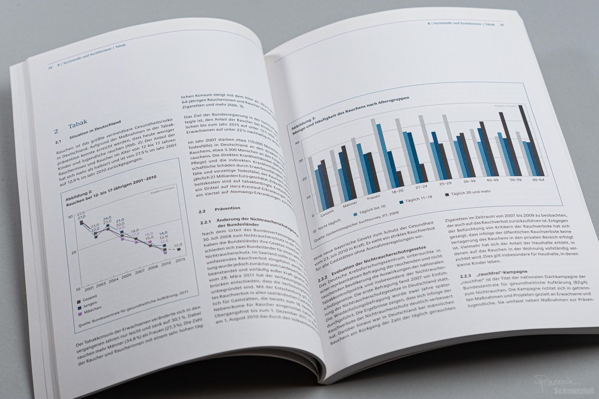 Textsatz und Erstellen von Grafiken nach bestehendem CD | Die Drogenbeauftragte der Bundesregierung | Anstellung bei da vinci design